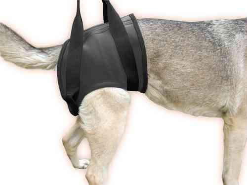 JULIUS-K9® rehabilitation harness