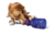 Petsafe® Busy Buddy® Tug-a-Jug™